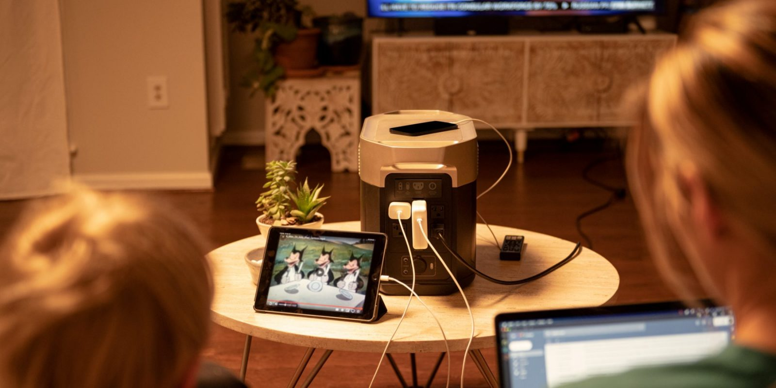 EcoFlow Delta Max Power 99% of Your Home Devices